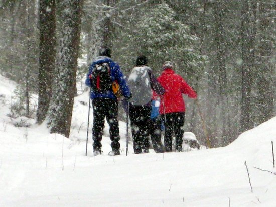 Stillwater Mountain Lodge: fresh snow is welcoming
