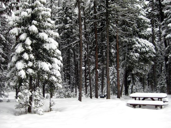 Stillwater Mountain Lodge: winter wonderland