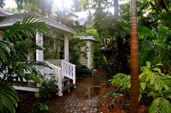 Island City House Hotel: Front desk and tropical garden