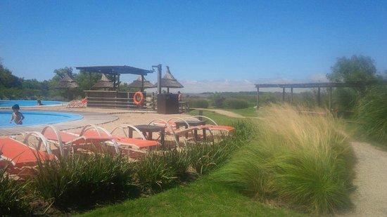 Sheraton Colonia Golf & Spa Resort: Vista desde las piletas, se ve el rio al fondo.