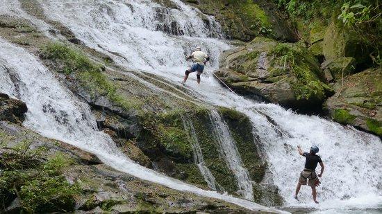 Bocawina Rainforest Resort & Adventures: Falls Rapelling