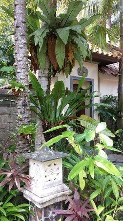 Tempat Senang Resort: like it