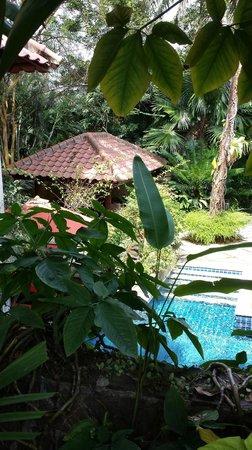 Tempat Senang Resort: hidden pool