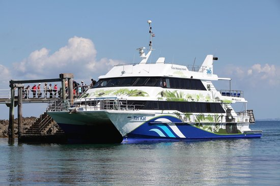 360 Discovery Cruises: Catch a 360 Discovery ferry