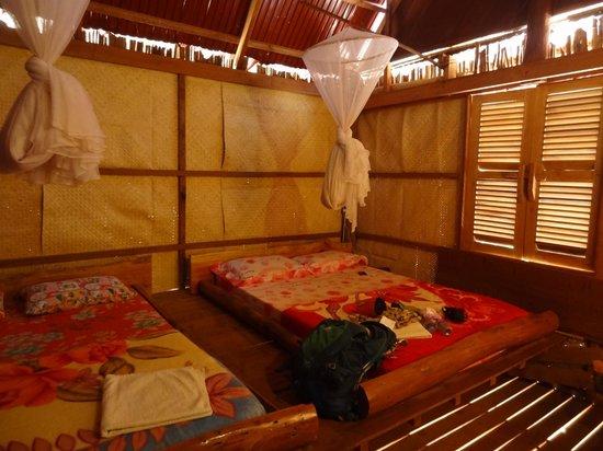 Tree Lodge: View of room