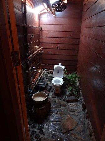 Tree Lodge: steps towards room