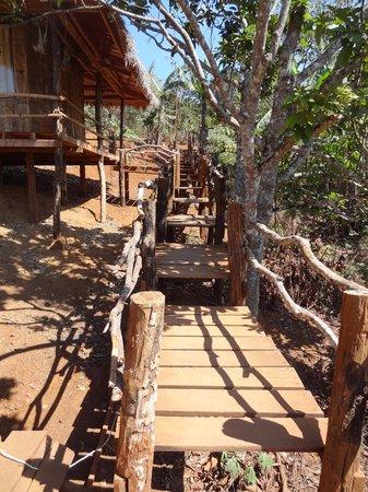 Tree Lodge: bathroom