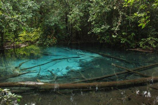 Emerald Pool (Sa Morakot): Blue Pool, a 800m de Emerald Pool