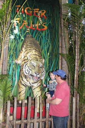 Palm Beach Zoo & Conservation Society: Fun