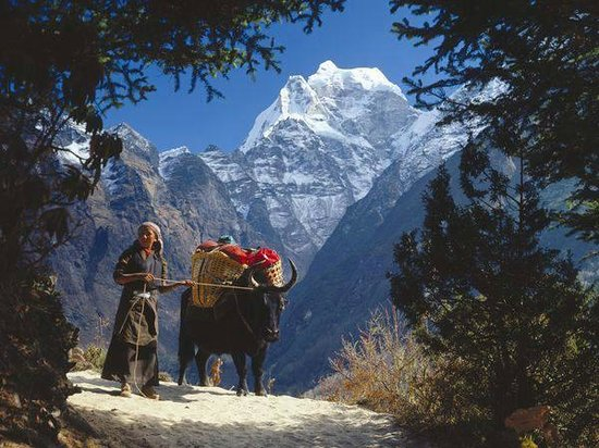 Nepal Hiking Adventure Company - Private Day Tours