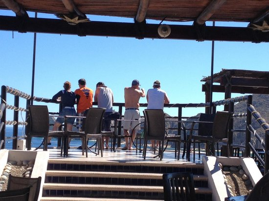 Baja Brewing Company: What a great place with a view!