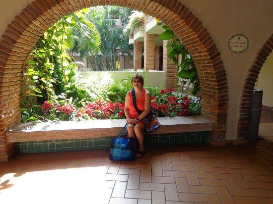 Hotel Playa Mazatlan: BEAUTIFUL POINTSETTA'S