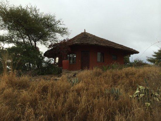 Kia Lodge – Kilimanjaro Airport: My lodge