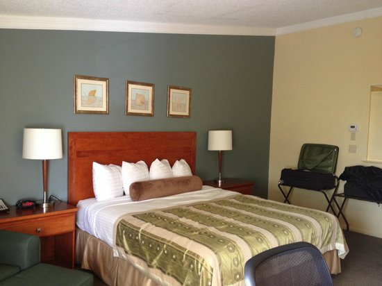 Best Western Plus Hill House: Room