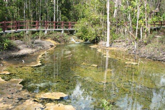 Emerald Pool (Sa Morakot): Clear waters