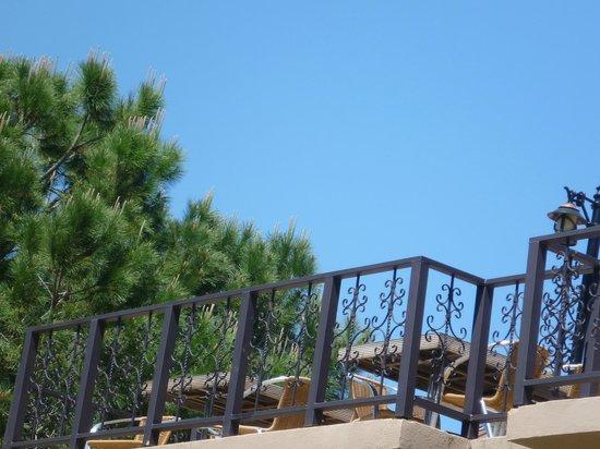 Grand Prestige Hotel & Spa: Растительность