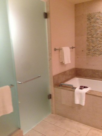 The Ritz-Carlton, Dove Mountain: Bathroom