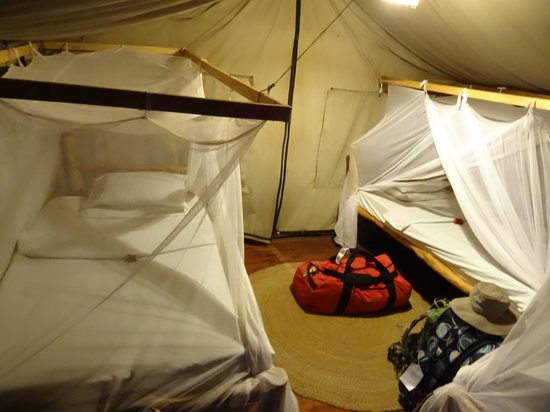Migunga Tented Camp: Tented room with nets all around to save you from the bugs