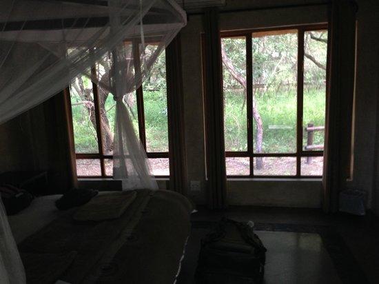 Thornhill Safari Lodge: Our room.