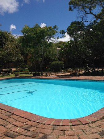 Thornhill Safari Lodge: Pool.