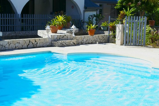 Pension Ahitea Lodge: piscine matin