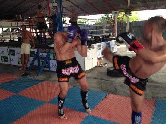 Phangan Muay Thai and Fitness Gym Image