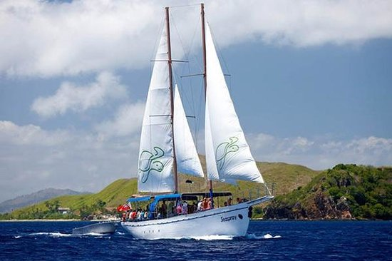 Seaspray Sailing Adventure-Day Tours