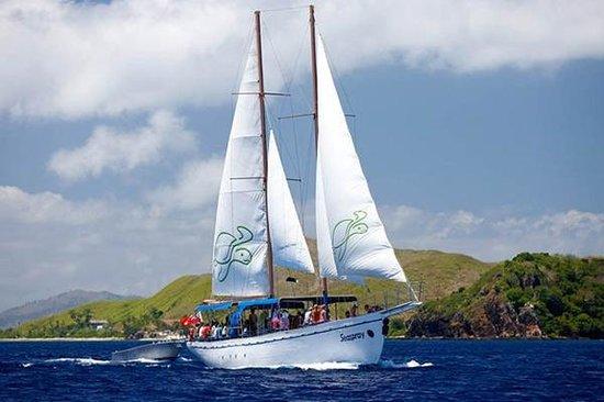 Seaspray Sailing Adventure-Day Tours