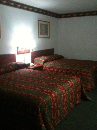 Regency Inn Gatesville: Double room from door