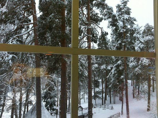Lapland Hotel Bear's Lodge: Вид из номера
