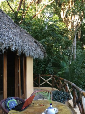 Tailwind Jungle Lodge: Casa Pumita Terraza