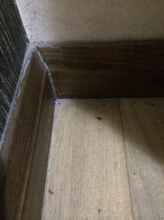 Sky Kamer Boutique Hotel : ta podłoga nie była sprzątana od dawna