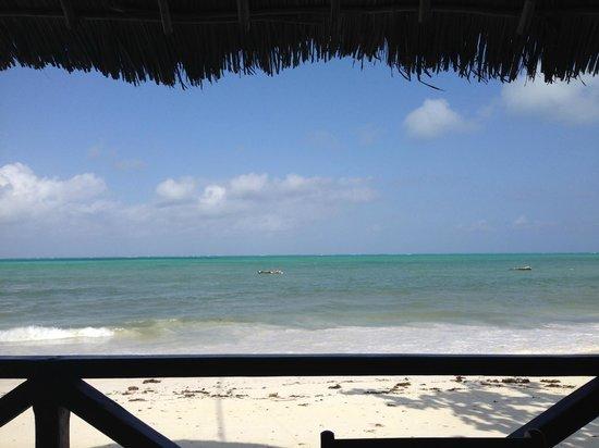 Jambiani White Sands Bungalows : Вид из ресторана