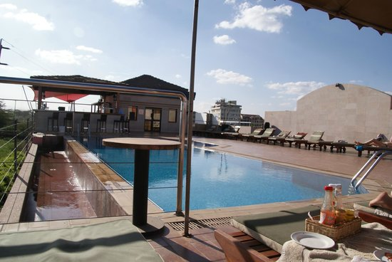 Ole Sereni : Roof pool overlooking the park