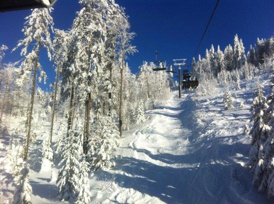 Inns Holz: Skigebiet Hochficht