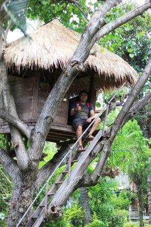 Rambutan Boutique Hotel : Rumah Pohon