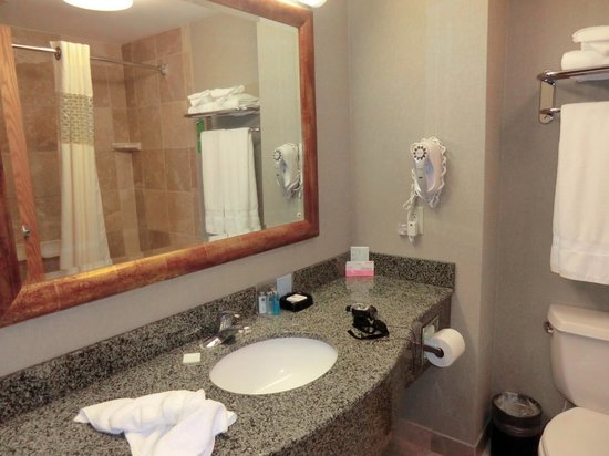 Hampton Inn & Suites Bemidji: #210