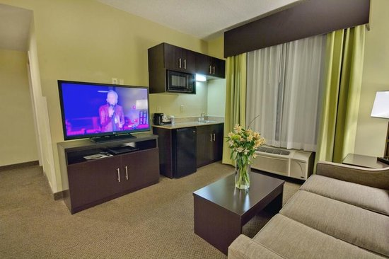 Enjoyable Executive Suite Living Room Full Sleeper Sofa Kitchenette Dailytribune Chair Design For Home Dailytribuneorg