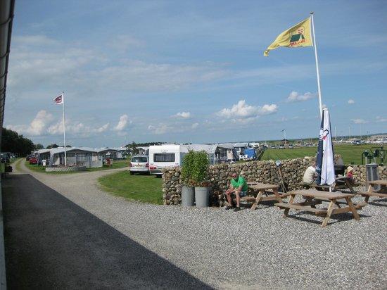 Humlum Fiskerleje & Camping: På pladsen