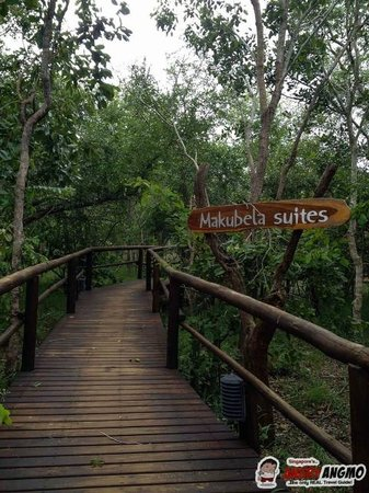 Idube Game Reserve Lodge : To the Makubela Suites