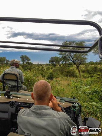 Idube Game Reserve Lodge : Game Drive, with open Vehicles, Ranger and Tracker