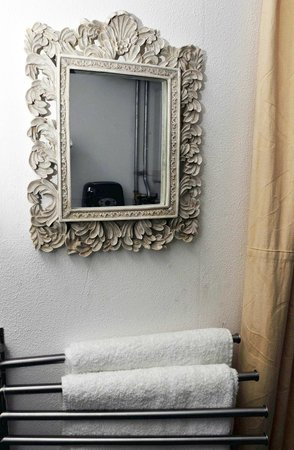 De Zandhof: mirror