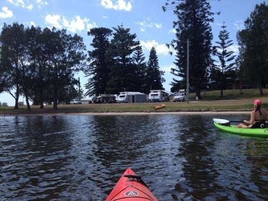 Belmont Lakeside Holiday Park: Paddling back into shore, looking towards our vans.