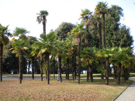 Castello e Parco di Masino : Parco e natura!