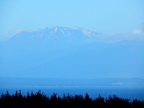 Waipahihi Botanical Gardens: Mount Ruapehu in the far distance viewed from the gardens