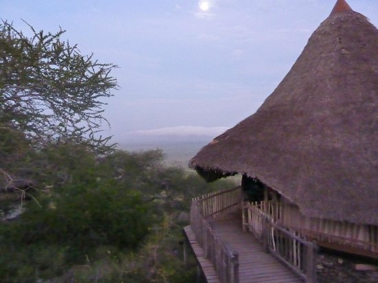 Lions Bluff Lodge: Our Banda early morning