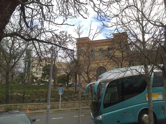 Museo Nacional de Ciencias Naturales: Otro autocar