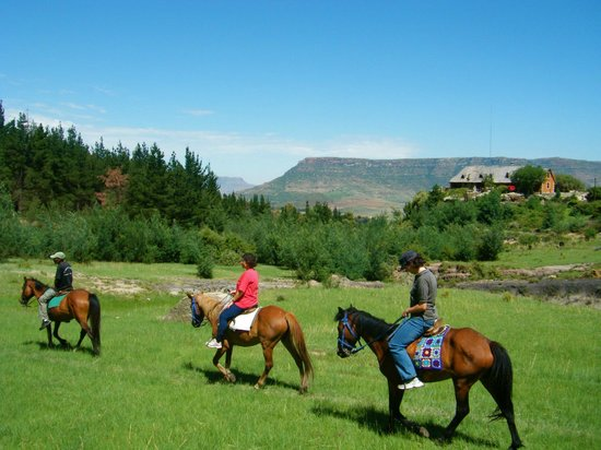 Morija Guest House: Depart d'une promenade a cheval/Start of a horse ride