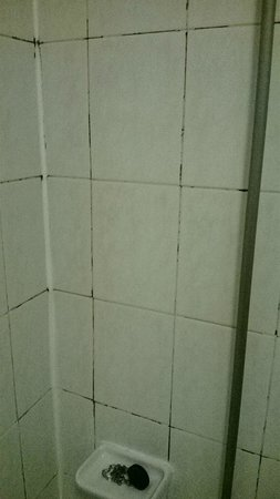 Norfolk Plaza Hotel: Filthy grouting