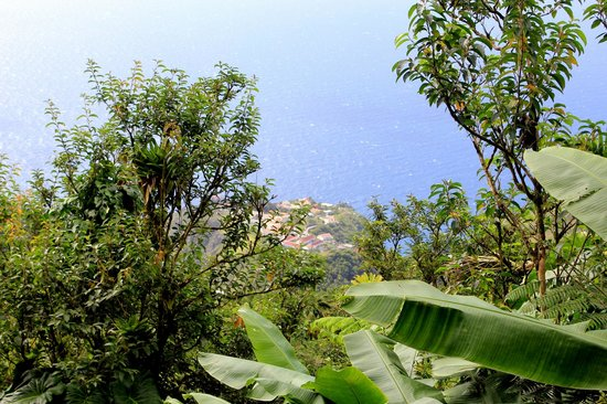 Mont Scenery : The view of Windwardside
